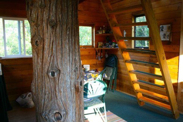 cedar-creek-treehouse2