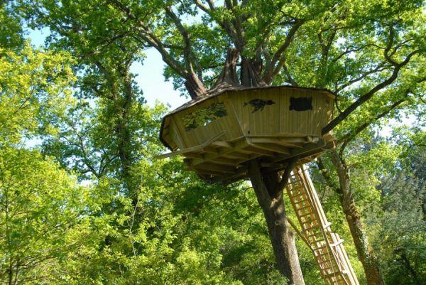 tree-houses-alicourts5