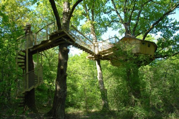 tree-houses-alicourts6